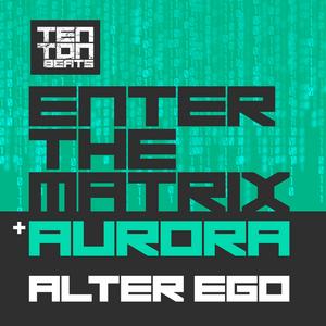 EGO, Walter - Enter The Matrix