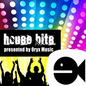 VARIOUS - Best Of House Music Bits Vol 10