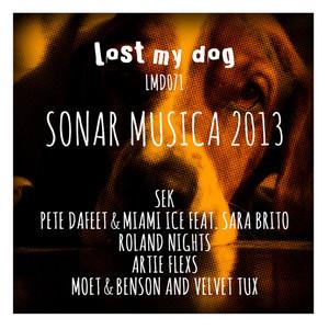 VARIOUS - Sonar Musica 2013