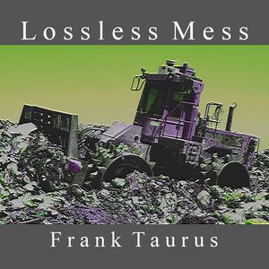 TAURUS, Frank - Lossless Mess