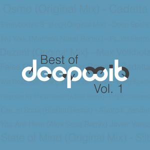 VARIOUS - Best Of DeepWit