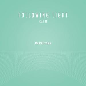 FOLLOWING LIGHT - Calm