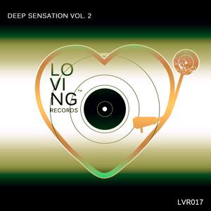 VARIOUS - Deep Sensation Vol 2