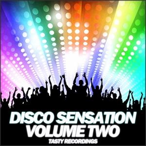 VARIOUS - Disco Sensation - Volume Two