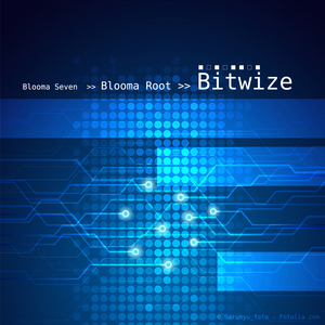BLOOMA ROOT - Bitwize