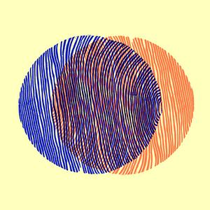 WHITMAN, Keith Fullerton/FLORIS VANHOOF - Split