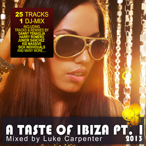 CARPENTER, Luke/VARIOUS - A Taste Of Ibiza 2013 Pt 1: Summer House Anthems (unmixed tracks)