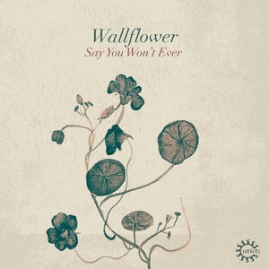 WALLFLOWER - Say You Won't Ever