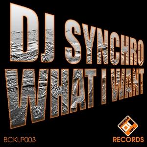 DJ SYNCHRO - What I Want