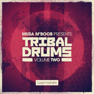 LOOPMASTERS - Musa M'Boob Presents Tribal Drums Vol 2 (Sample Pack WAV/APPLE)