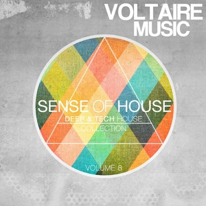 VARIOUS - Sense Of House Vol 8