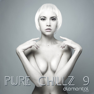 VARIOUS - Pure Chillz 9