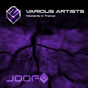 VARIOUS - Moments In Trance