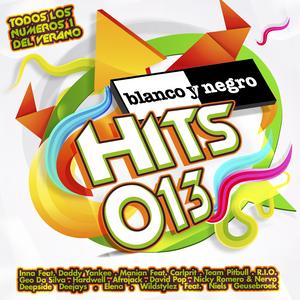 VARIOUS - Blanco Y Negro Hits 013