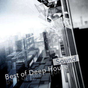 VARIOUS - Best Of Deep House Sound
