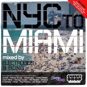 ELECTROBIOS/BONG/VARIOUS - NYC To Miami 2013 (mixed by Electrobios & BONG) (unmixed tracks)