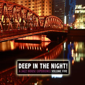VARIOUS - Deep In The Night Vol 5 A Jazz House Experience
