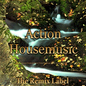 VARIOUS - Action Housemusic (Autumn Deeptech Meets Tribal Proghouse Music Tunes In Key A)