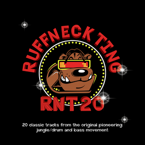 SUBSTANCE/DJ DAZEE/DECODER/FELONY - RNT 20