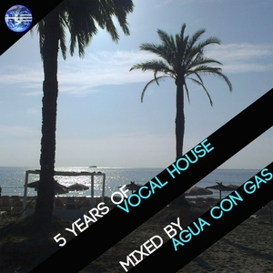 AGUA CON GAS/VARIOUS - 5 Years Of Vocal House (unmixed tracks)