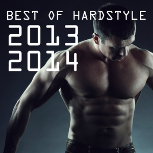 VARIOUS - Best Of Hardstyle 2013 2014
