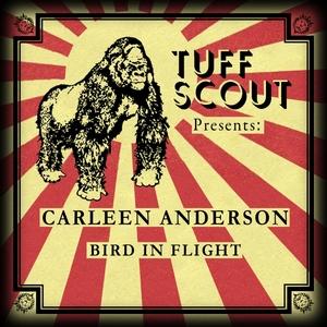 ANDERSON, Carleen - Bird In Flight