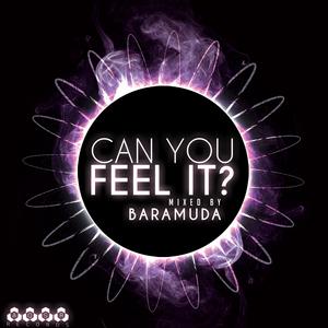 BARAMUDA/VARIOUS - Can You Feel It? Mixed By Baramuda