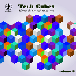 VARIOUS - Tech Cubes Vol 5 Selection Of Finest Tech House Tunes