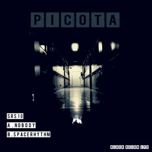 PICOTA - Nobody/Space Rhythm