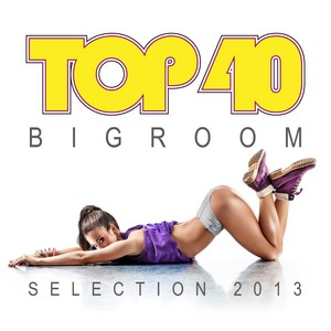 VARIOUS - Top 40 Bigroom Selection 2013