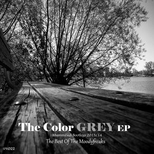 MOODYFREAKS, The - The Color Grey EP Mummified Bootlegs 2013 2014