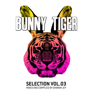 VARIOUS - Bunny Tiger Selection Vol 3