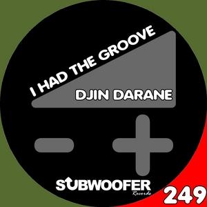 DJIN DARANE - I Had The Groove