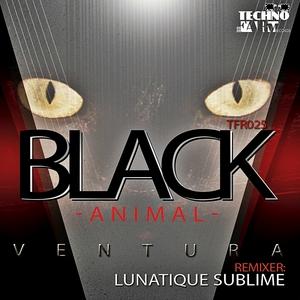 VENTURA - Black Animal