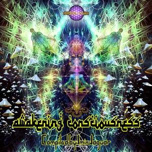 VARIOUS - Awakening Consciousness
