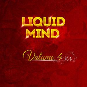 VARIOUS - Liquid Mind Vol 4