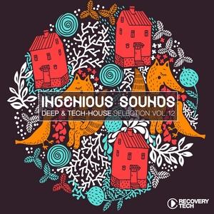 VARIOUS - Ingenious Sounds Vol 12
