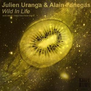 URANGA, Julien/ALAIN FANEGAS/FLASHERS - Wild In Life