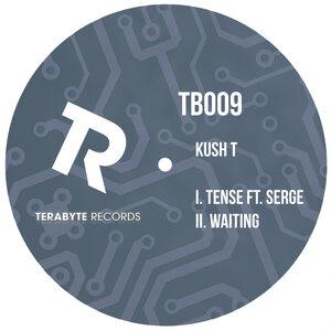 KUSH T feat SERGE - Tense