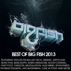 VARIOUS - Best Of Big Fish 2013