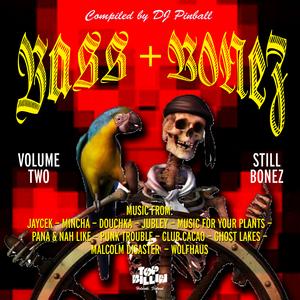 DJ PINBALL/VARIOUS - Bass+Bonez Vol II