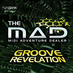 MAD, The - Groove Revelation