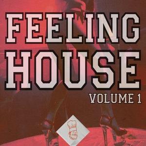 VARIOUS - Feeling House Vol 1