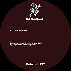 DJ RA SOUL - True Science