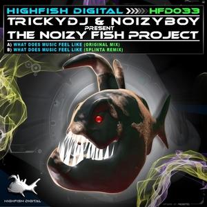 TRICKYDJ/NOIZY BOY - What Does Music Feel Like