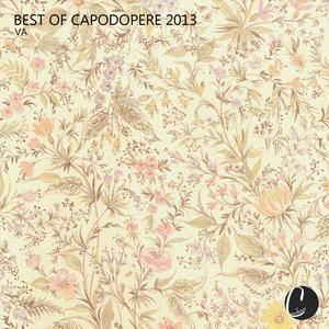 VARIOUS - Best Of Capodopere 2013