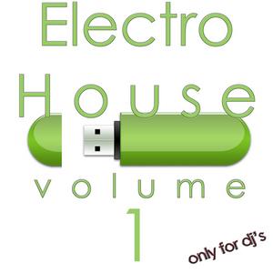 VARIOUS - Electro House Vol 1