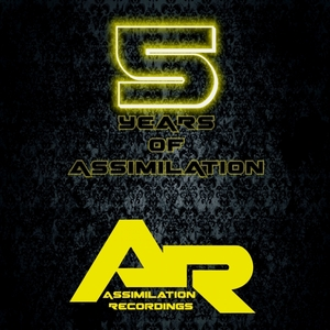 VARIOUS - 5 Years Of Assimilation