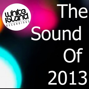 VARIOUS - The Sound Of 2013