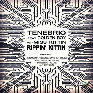 TENEBRIO feat GOLDEN BOY with MISS KITTIN - Rippin Kittin